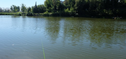 Ücretli balık avı göletleri Moskova_15